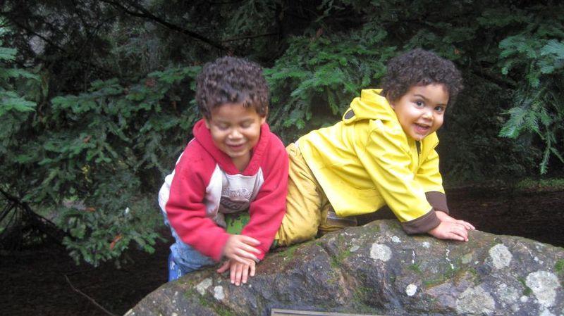 Forest 5, rock climbing